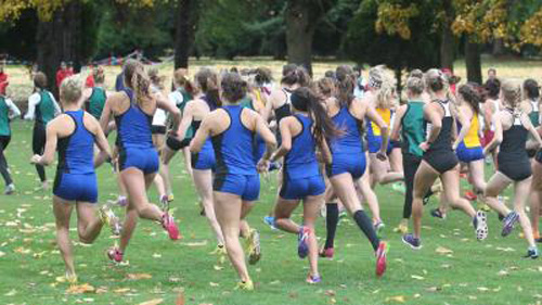 2019 Boys and Girls Cross Country Post Season Dates and Special Events Calendar
